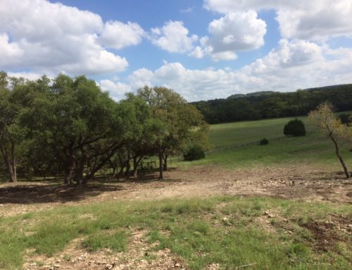 Land Prep 101: Have a plan and a budget for your land